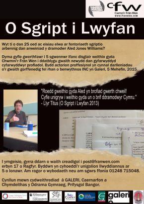 O Sgript i LwyfanTERF